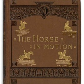 J. D. B. Stillman - The Horse in Motion, As Shown by Instantaneous Photography, With a Study on Animal Mechanics, Photo by Eadweard Muybridge, 1882