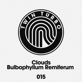 Clouds (Calum Macleod & Liam Robertson) - Bulbophyllum Remiferum