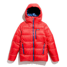 Patagonia - Men's Fitz Roy Down Parka-FRE