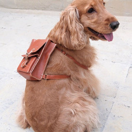 harlex - Personalized Dog Backpack