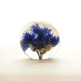 Landscape Products - Hafod Grange - Paperweight S #corn flower