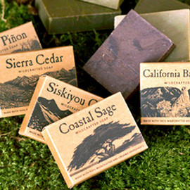 Juniper Ridge  - wildcrafted soap