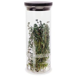 Progressive - HK-10 Fresh Herb Keeper