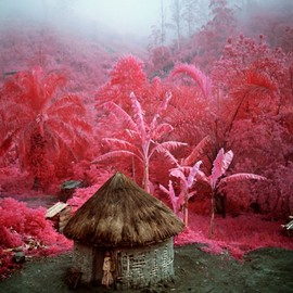 PINK SOLDIERS BY RICHARD MOSSE