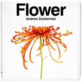 Andrew Zuckerman - Flower