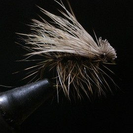 Fly fishing - Elk Hair Caddis