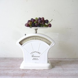 thefoxandthespoon - Vintage Persinware Culinary Scales in Pure White.