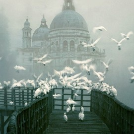 Italy - Venice in the fog