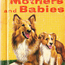 Animal Mothers and Babies - A Rand McNally Junior Elf Book