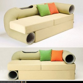 Crazy Couch for Cats