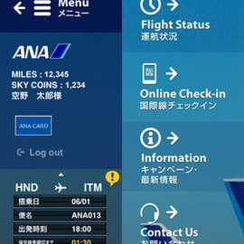 ANA MILEAGE CARD