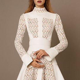 Alexander McQueen - Alexander McQueen Paneled Lace Flared Dress