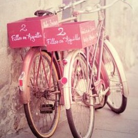 beautiful bicycles pink bike