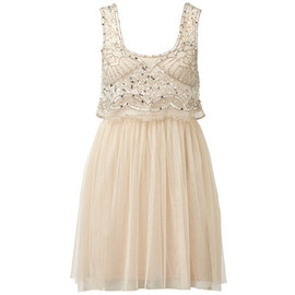 Mesh Embellished Tulle Dress - Forever New
