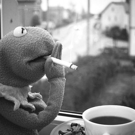 Kermit the Frog - coffee break