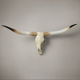 Restoration Hardware - Texas Longhorn Steer Skull Natural