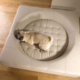 pet-interiors.de - Cube Bedドッグ用