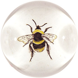 JOHN DERIAN - BEE DOME PAPERWEIGHT