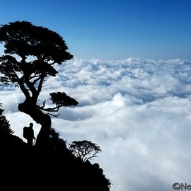 Sea of Clouds at Taiwan's Holy Ridge