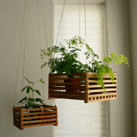 Hanging Plants Baskets