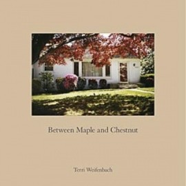 Terri Weifenbach - Between Maple and Chestnut / Terri Weifenbach