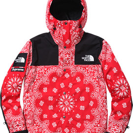 Supreme, THE NORTH FACE - Bandana Mountain Parka