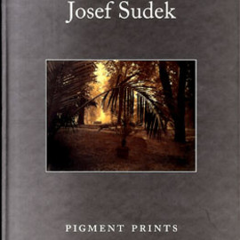 Josef Sudek - Pigment Prints, Salander-O'Reilly Galleries