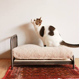 JOURNAL STANDARD FUNITURE - SENS BED for CAT