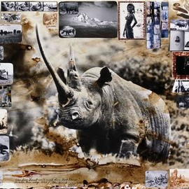 Peter Beard - Rhino Photograph