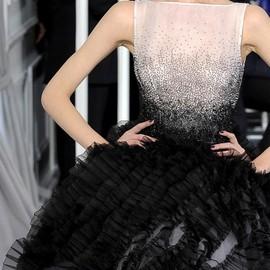 Christian Dior - Dior haute couture SS 2012.-details.