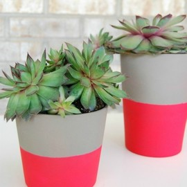 pink painted planter