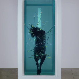 Damien Hirst - Exquisite Pain