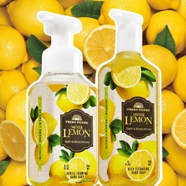Bath & Body Works - Hand Soaps, Meyer Lemon