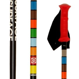 surface - team ski poles