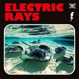Various Artists - ELECTRIC RAYS