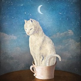 Christian Schloe - Cat in a cup
