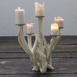 Polished Antler Candlesticks by Roost