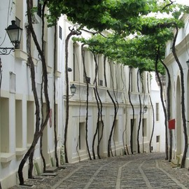 Spain  - Street in Jerez, Spain