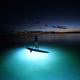 Nocqua - Underwater LED Lighting System