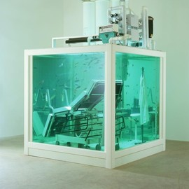 Damien Hirst - Lost Love