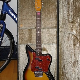 fender - electric 12