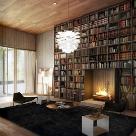 a lot of books and warmth and cozy rug