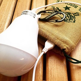 USB Portable LED Light