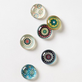 Anthropologie - Glass Sonesta Magnets