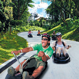 Attraction Tours and Limousine Pte Ltd - go-cart and toboggan