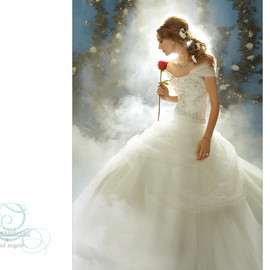 Disney Fairly Tale Wedding - Wedding dress