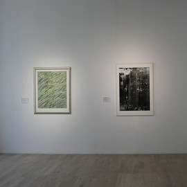 Cy Twombly & GERHARD RICHTER - edition
