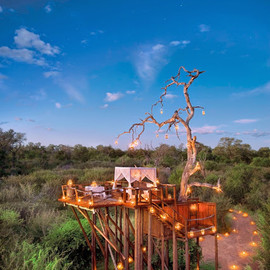 Lion Sands Private Game Reserve, South Africa - Chalkley Treehouse