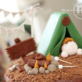 Camp Party Cake