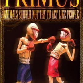 PRIMUS - Animals Should Not Try to Act Like People [DVD] [Import]